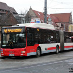 3. N-TX 175
